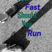 How Fast Should You Run and Half Marathon Training Recap