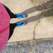 Life Lately and St. Louis Go! Half Marathon Training (March 2)
