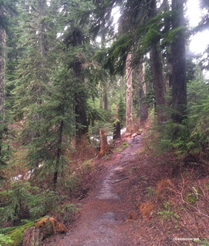 Mile Markers: Mirror Lake Hiking