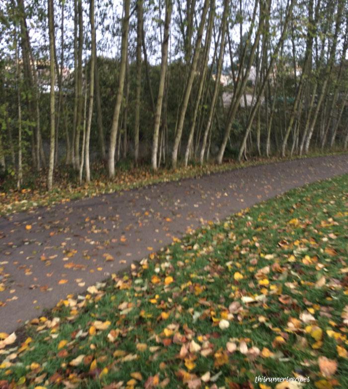 Mile Markers November Running