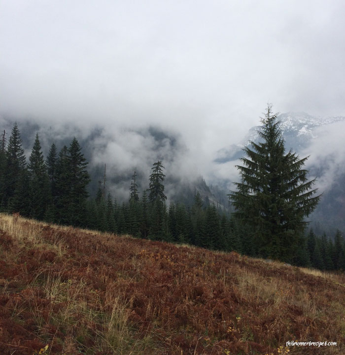 Pacific Crest Trail Hiking in Snoqualmie Pass