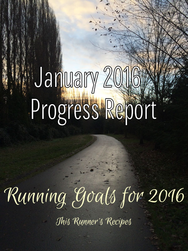 Believe in Your Ability to Succeed: January 2016 Goals Progress Report
