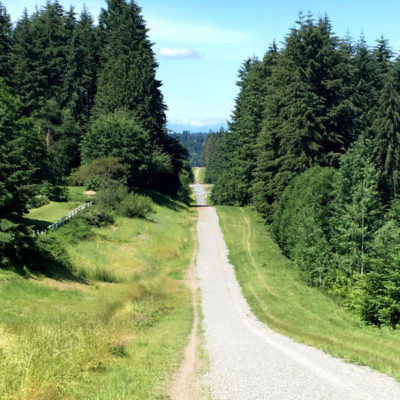 Hill Running Benefits and 3 Hill Running Workouts