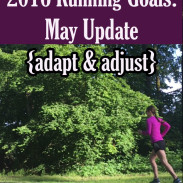 Adapt and Adjust: May 2016 Goal Update