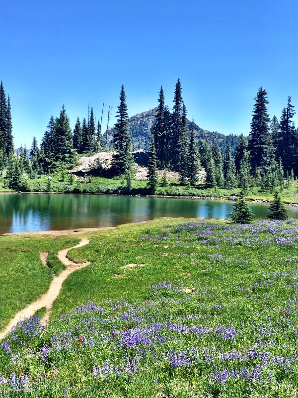 Naches Peak Loop
