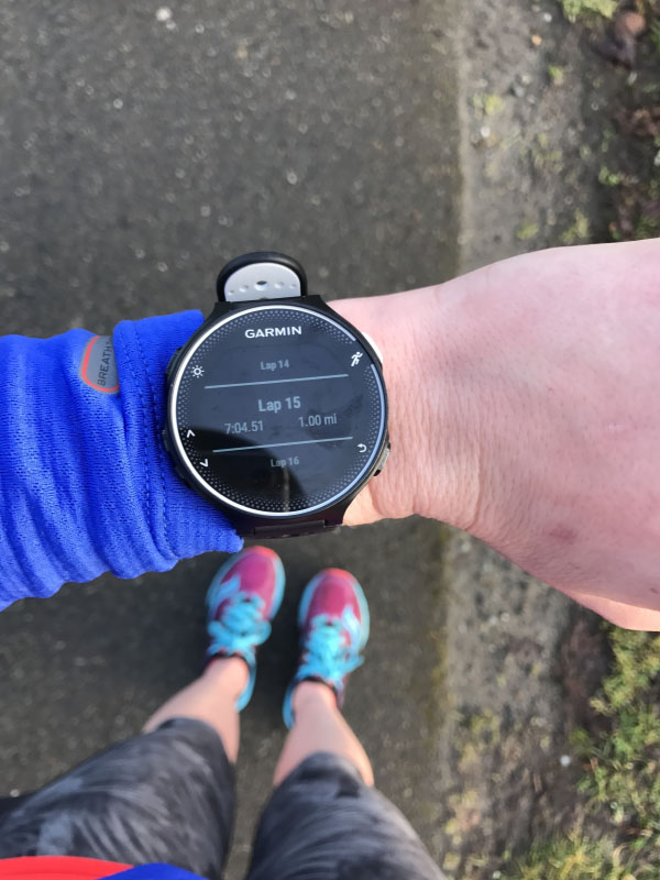 Lake Sammamish Half Marathon Training Week 8