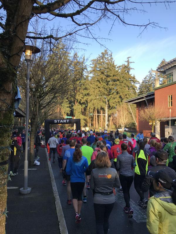 Half Marathon Training and Racing Guide