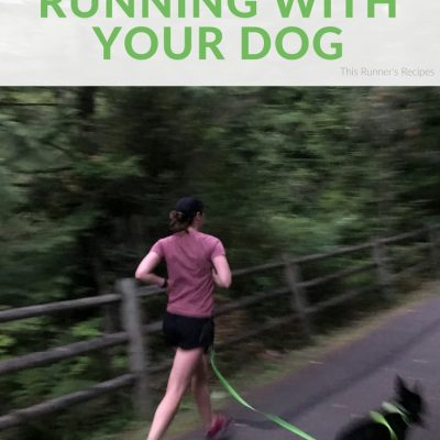 A Useful Guide to Running with Your Dog